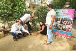 Tree plantation at Vasant Kunj